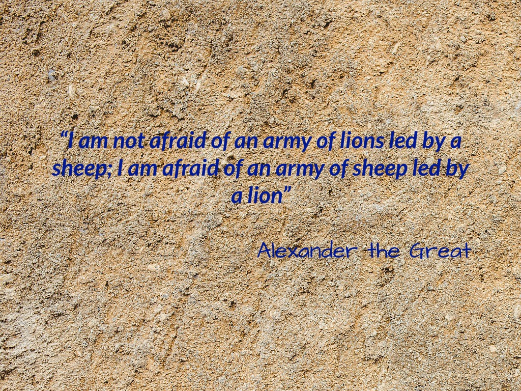 Bits of Wisdom #15 : Alexander the Great